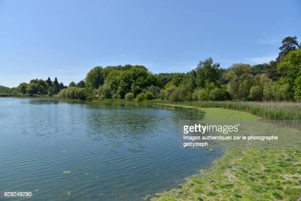 L'Etang du Gris Moulin under heat temperature and clear sky
