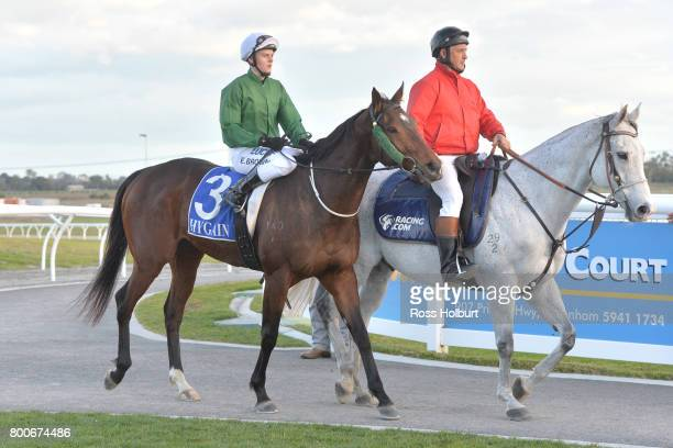 Ethan Brown returns to the mounting yard on Orient Line after winning the 9 Mile Fresh BM70 Handicap at Racingcom Park Synthetic Racecourse on June...