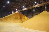 Ethanol is just one of the commodities produced at Iowa ethanol plants. Distillers dried grains (DDGs) are a co-product of the ethanol production process and provide a valuable, nutritious feed supply