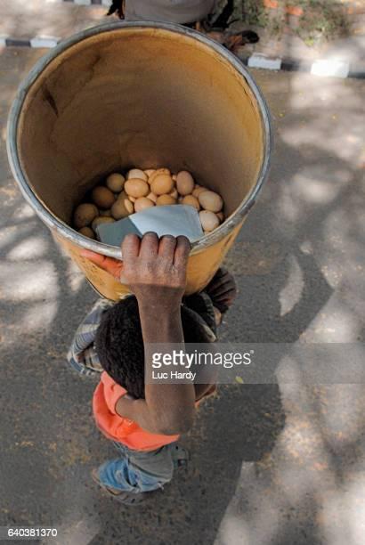Ethiopian boy carrying a bucket of eggs