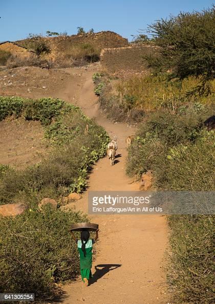 Ethiopian girl going to a traditional Argoba stone houses village on January 12 2017 in Koremi Ethiopia