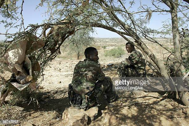 Ethiopian soldiers take advantage of the shade of a tree 20 November 2005 on a hilltop outpost overlooking the northern Ethiopian town of Badme in...