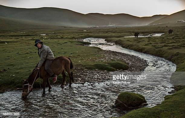 A ethnic Tibetan nomad waters his horse while herding at his summer grazing area on July 24 2015 on the Tibetan Plateau in Yushu County Qinghai China...