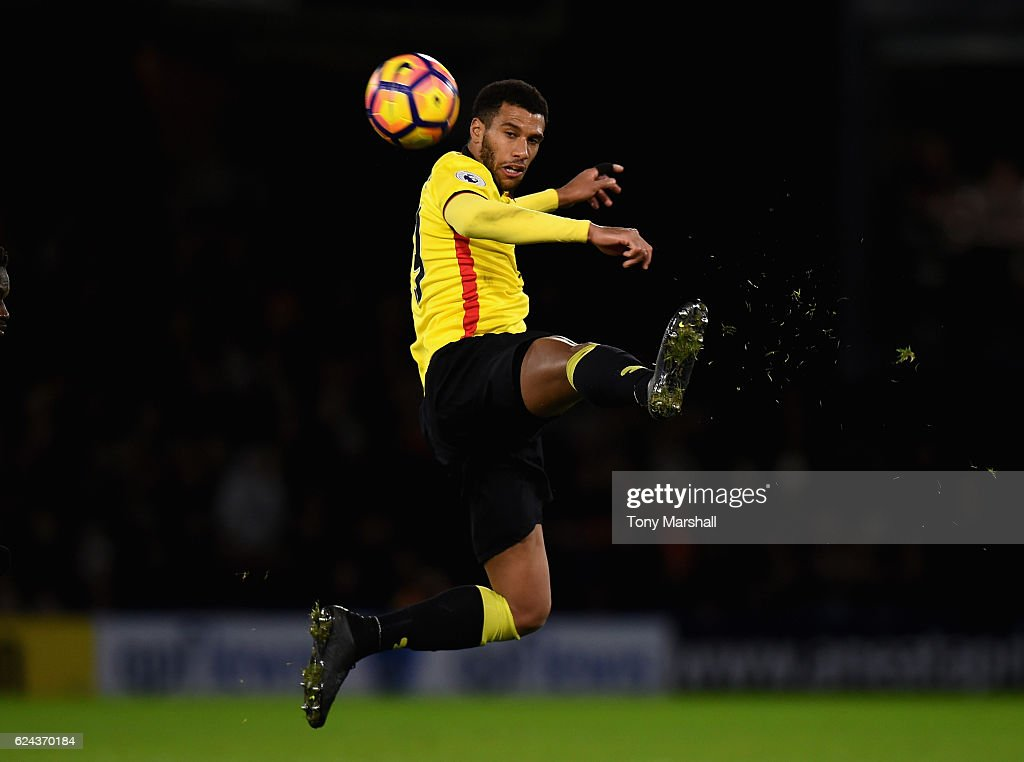 Etienne Capoue of Watford during the Premier League match between Watford and Leicester City at Vicarage Road on November 19, 2016 in Watford, England.