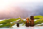 Eucalyptus aromatherapy essential oils in bottles