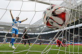 Eugen Polanski of Hoffenheim scores his team's second goal during the Bundesliga match between 1899 Hoffenheim and Hamburger SV at Wirsol...