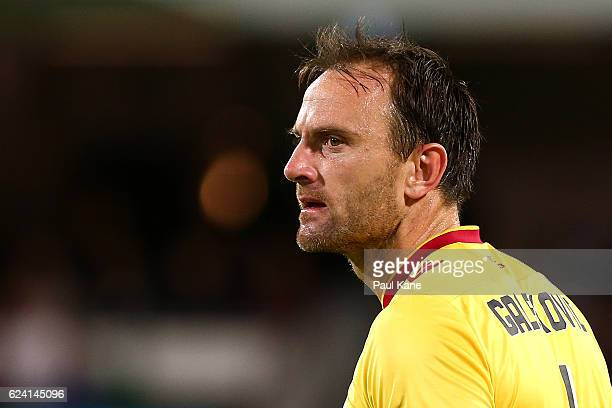 Eugene Galekovic of Adelaide looks to the fourth official during the round seven ALeague match between the Perth Glory and Adelaide United at nib...