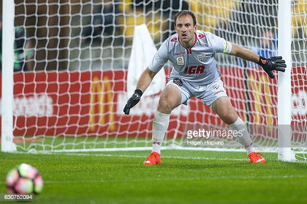 Eugene Galekovic of Adelaide United in action during the round 13 ALeague match between Wellington Phoenix and Adelaide United at Westpac Stadium on...