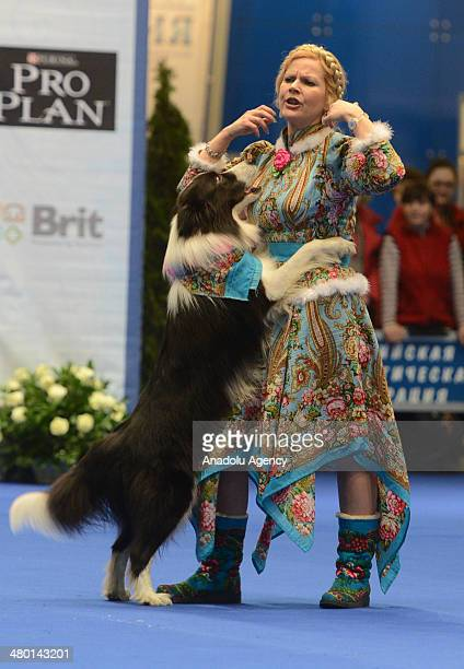 Eurasia Dog Show 2014 in Crokus Expo Center in Moscow Russia on March 23 2014 Eurasia Dog Show 2014 is organized with the contribution of Federation...