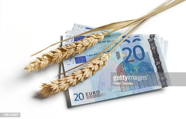 Euro bank note with ear of wheat