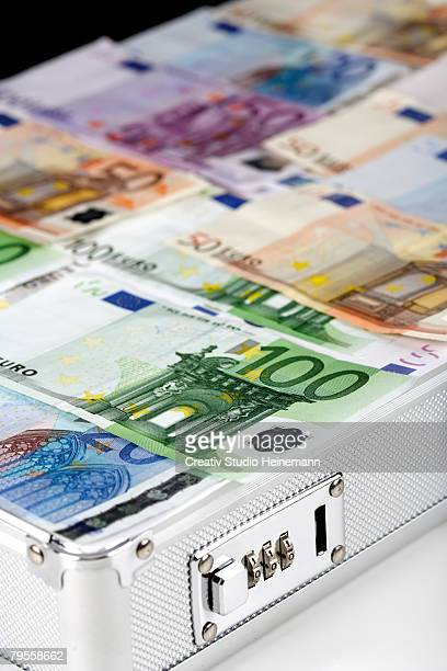 Euro coins in case