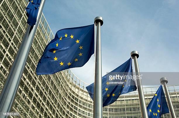 Euro Fahnen der Europäischen Kommission
