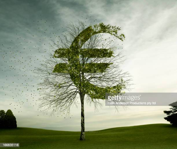 Euro sign carved in tree in field