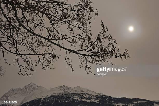 Europa, Schweiz, Graub¸nden, Bedeckter Himmel mit Sonne ¸ber winterlichen Bergen und Ast im Vordergrund