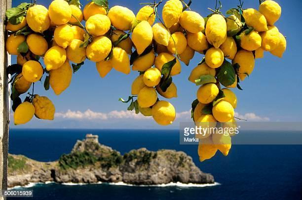 Europe Italy Campania Amalfi Coast Lemons