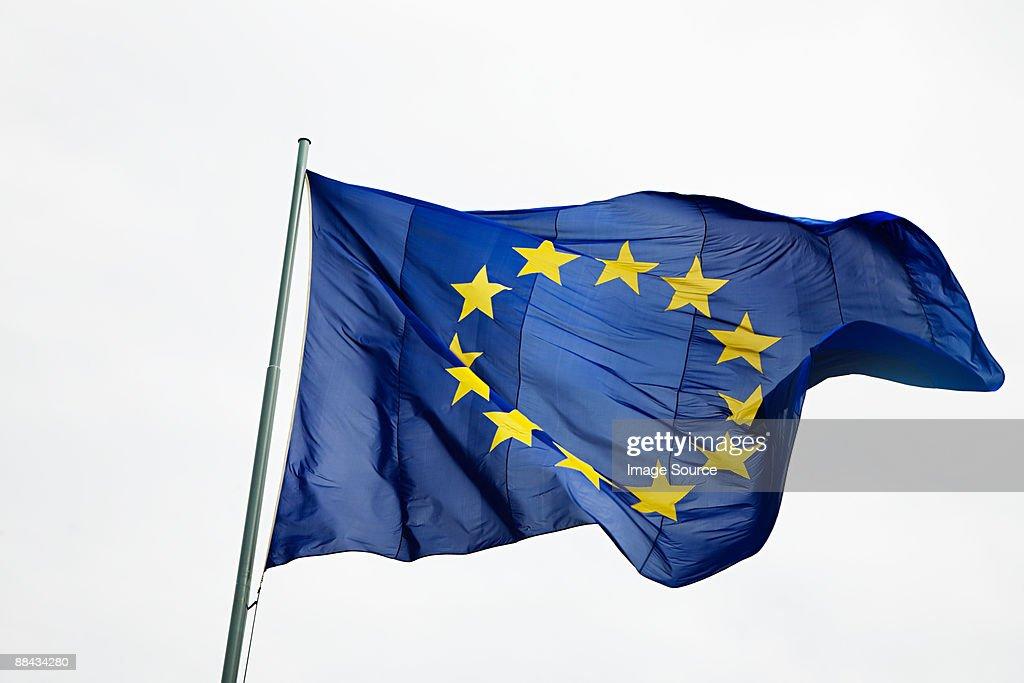 European community flag
