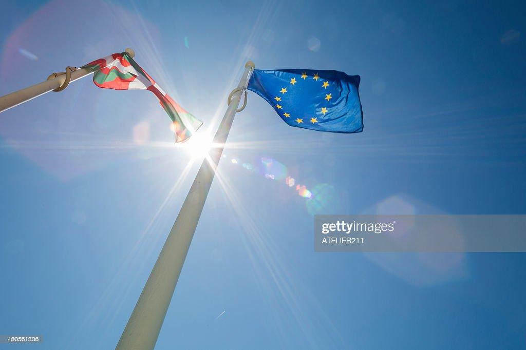 European flag : Stock Photo