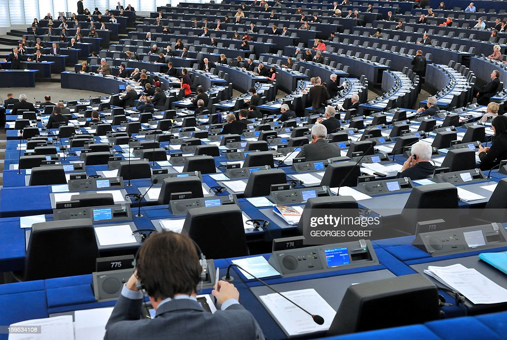 European MP's attend a debate on the future of European Union at the European Parliament in Strasbourg on January 15, 2013 during a plenary session.