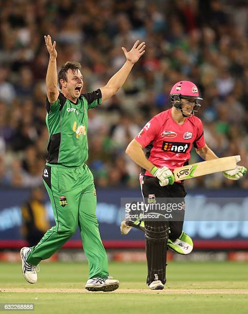 Evan Gulbis of the Stars appeals successfully to dismiss Daniel Hughes of the Sixers during the Big Bash League match between the Melbourne Stars and...