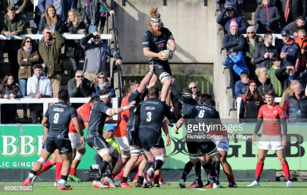 Evan Olmstead Newcastle Falcons wins a line out ball