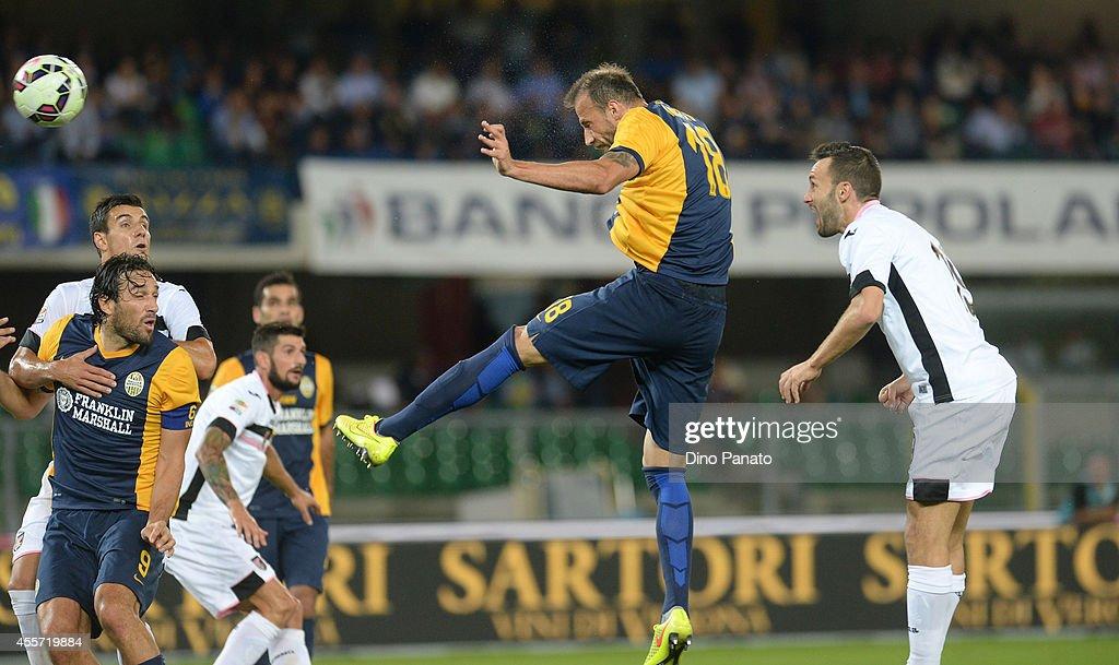 Hellas Verona FC v US Citta di Palermo - Serie A