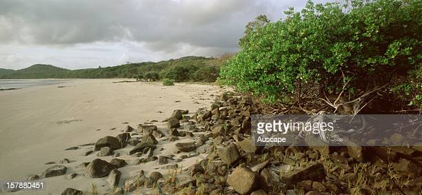 Evans BeachCape York Peninsula Queensland Australia