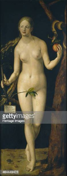 Eve 1507 Found in the collection of the Museo del Prado Madrid