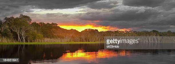 Evening Australian backwater.