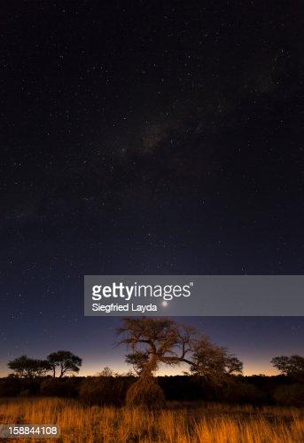 Evening sky above the Kalahari, Namibia : Stock Photo