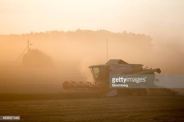Evening sunlight illuminates a Class KGaA combine harvester during the summer wheat harvest at the OOO Barmino farm enterprise in Vargany near Nizhny...