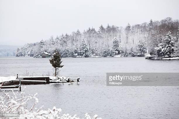 Evergreen Tree on Frigid Winter Adirondack Lake