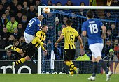 Everton's Scottish striker Steven Naismith tries to score past Young Boys' Swiss defender Scott Sutter during the UEFA Europa League round of 32...