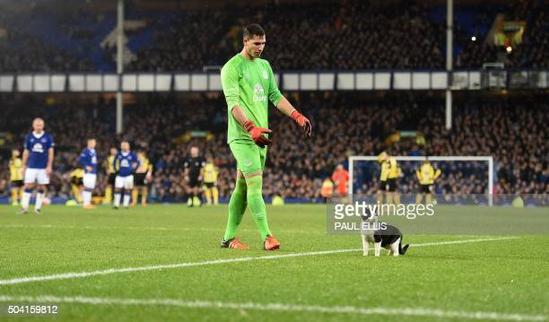 Everton's Spanish goalkeeper Joel Robles attempts to coax a cat off of the pitch during the FA Cup thirdround football match between Everton and...