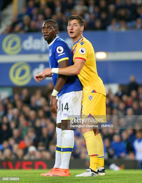 Everton's Yannick Bolasie and Crystal Palace's Joel Ward