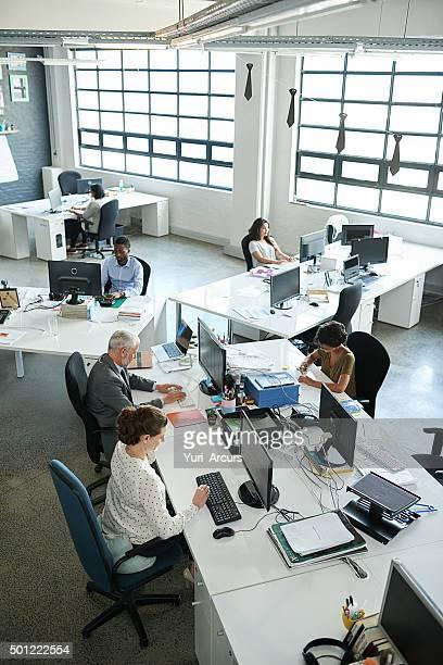Everyone's focused on their tasks