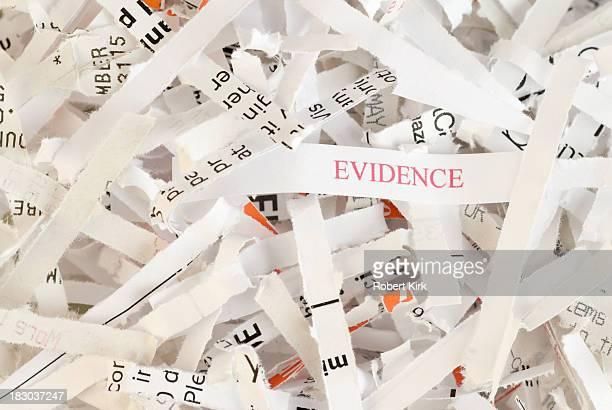 Evidence Destruction - Obstruction of Justice