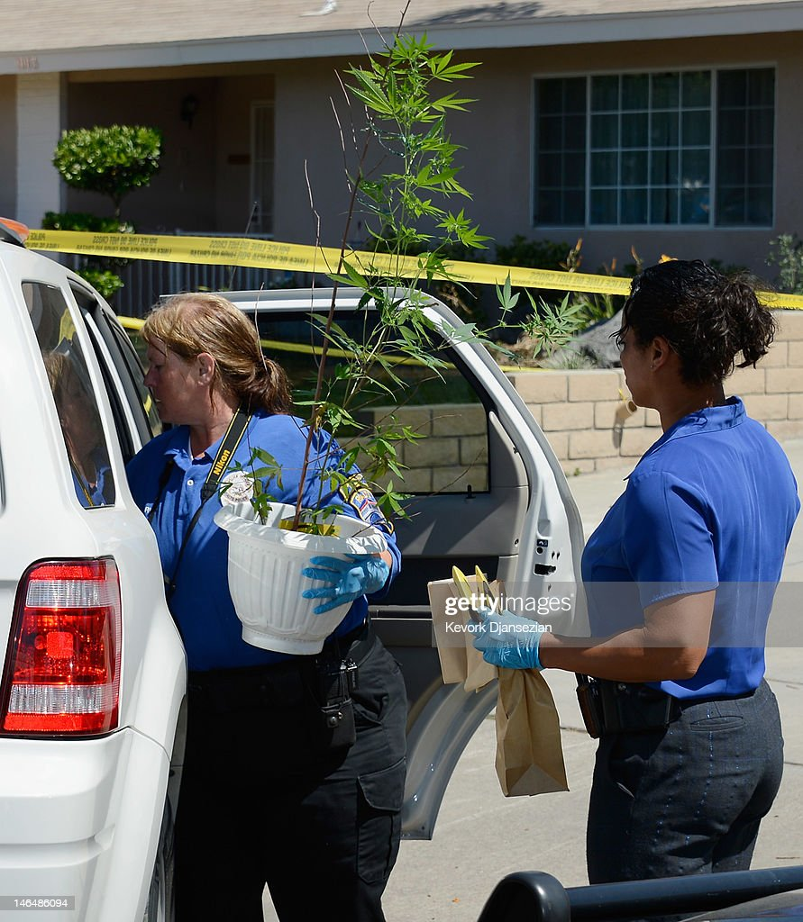 Evidence from Rodney King's home is taken to a police car by Rialto Police detective Carla McCullough (R) as technician Noretta Barker holds a medicinal marijuana plant after the death of King on June 17, 2012 in Rialto, California. King, whose video beating by Los Angeles police in 1991 sparked riots after the acquittal of the four officers involved, was found dead at the age of 47 from an apparent drowning in his swimming pool.