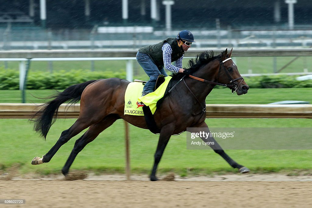 Exaggerator runs on the track during the Morning training for the 2016 Kentucky Derby at Churchill Downs on April 30, 2016 in Louisville, Kentucky.