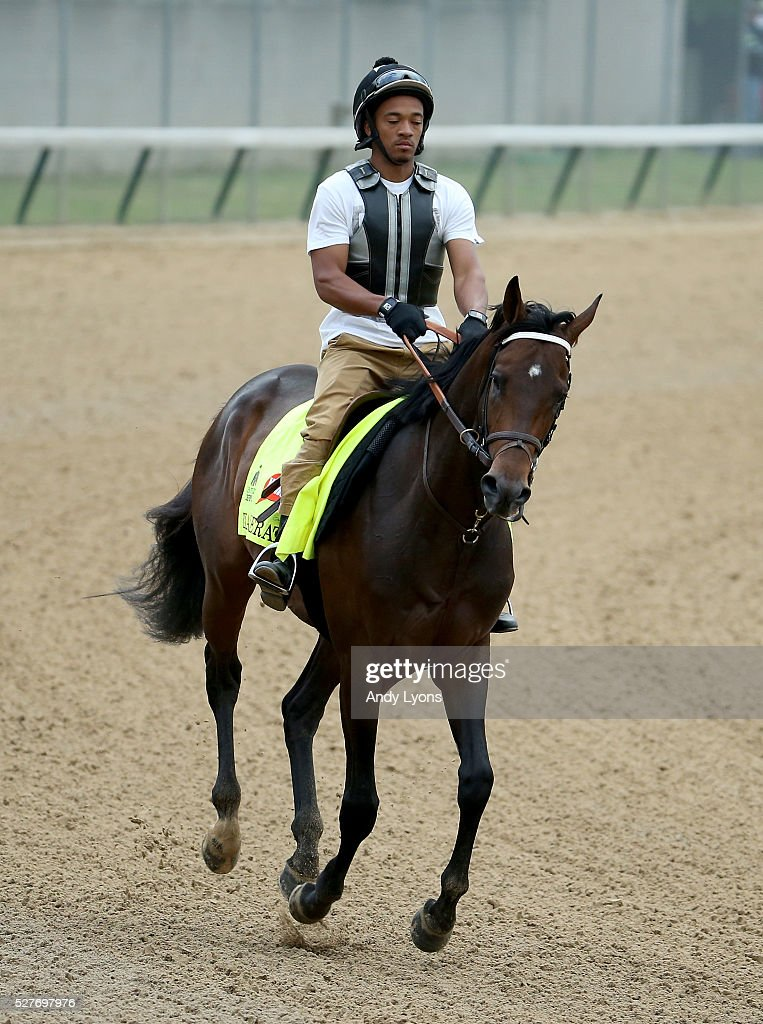 Exaggerator runs on the track during the morning training for the 2016 Kentucky Derby at Churchill Downs on May 03, 2016 in Louisville, Kentucky.