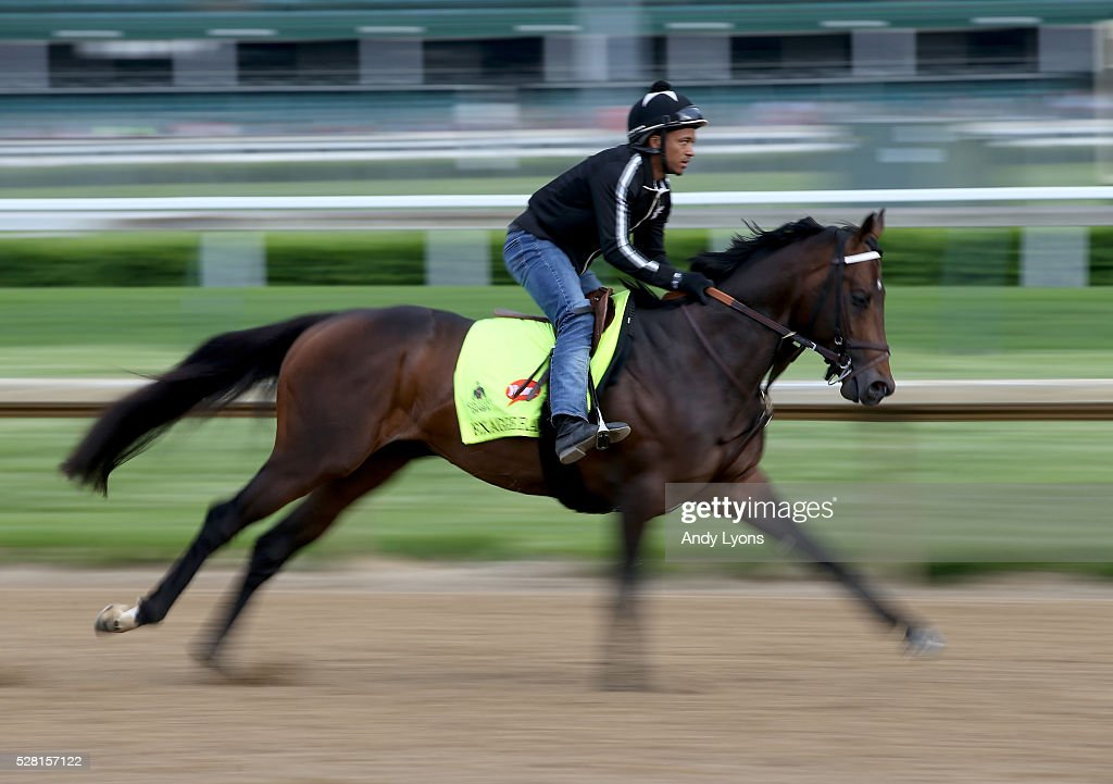 Exaggerator runs on the track during the morning training for the 2016 Kentucky Derby at Churchill Downs on May 04, 2016 in Louisville, Kentucky.