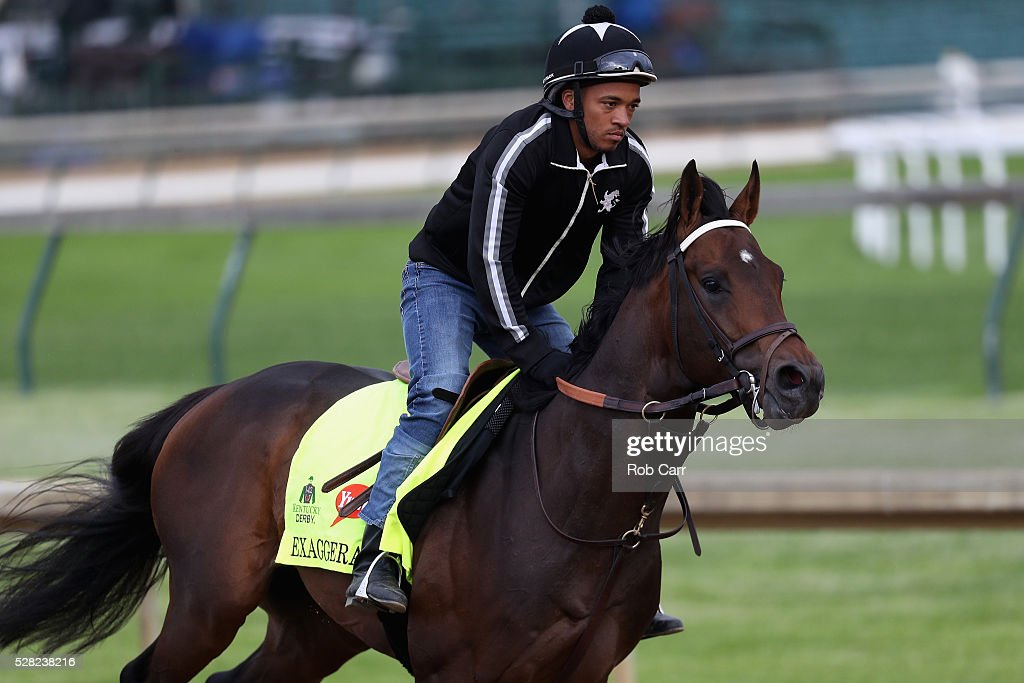 Exaggerator trains on the track for the Kentucky Derby at Churchill Downs on May 04, 2016 in Louisville, Kentucky.
