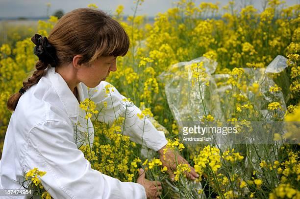 Examining scientific agriculture experiment