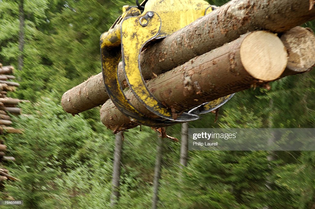 Excavator with timber.