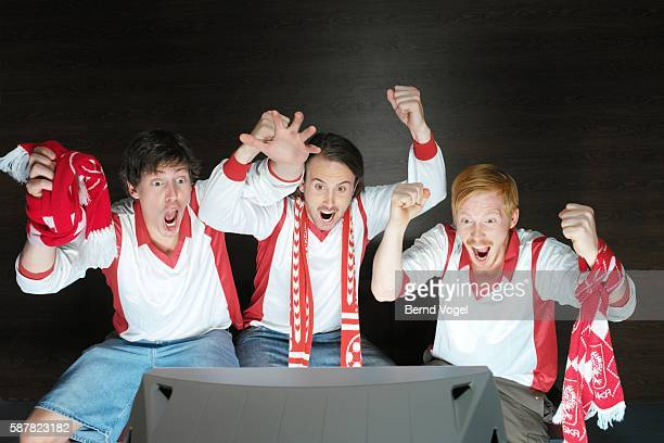 Excited soccer fans