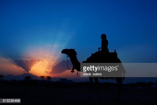 exciting sunset riding a camel