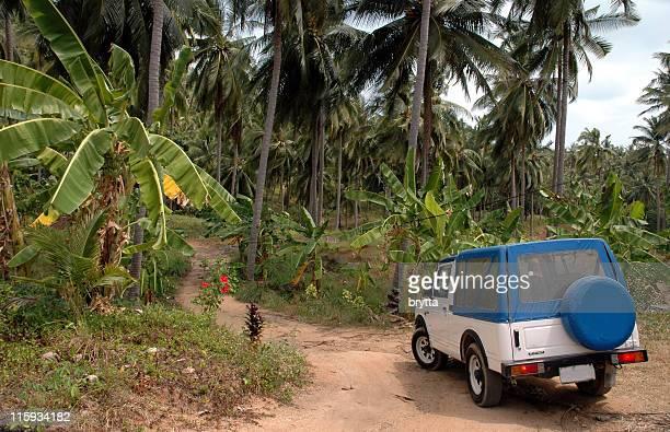 excursion en Jeep