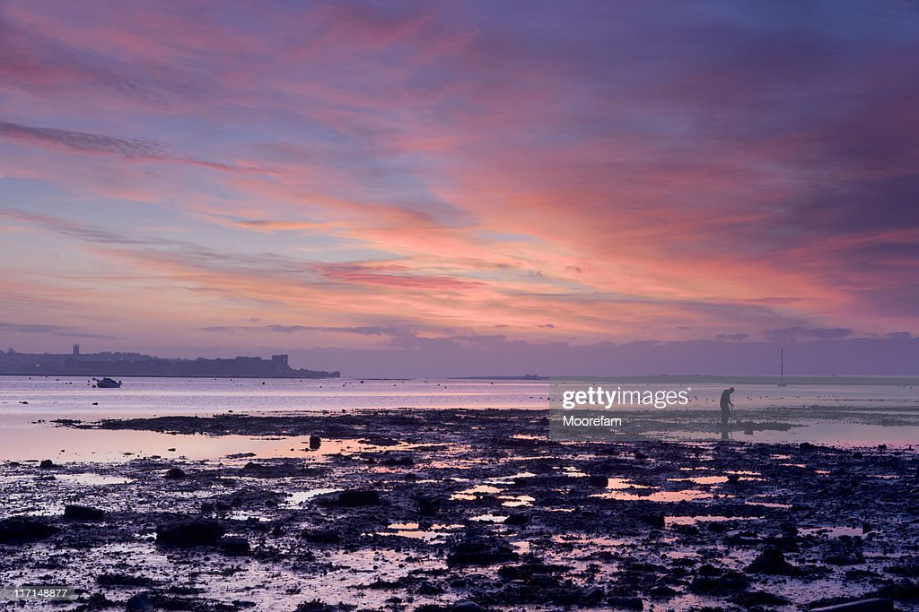 Exe estuary at colourful sunrise with man digging : Stock Photo