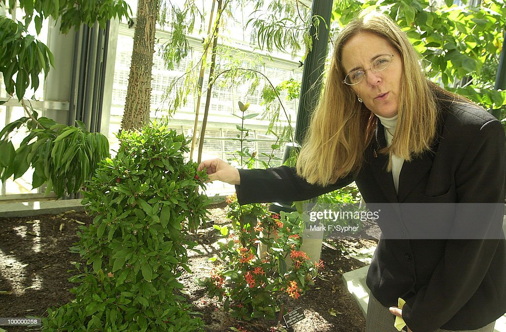 Executive Director of the U.S. Botanic Garden, Holly Shimizu, checks on the health of her plants after being transplanted.
