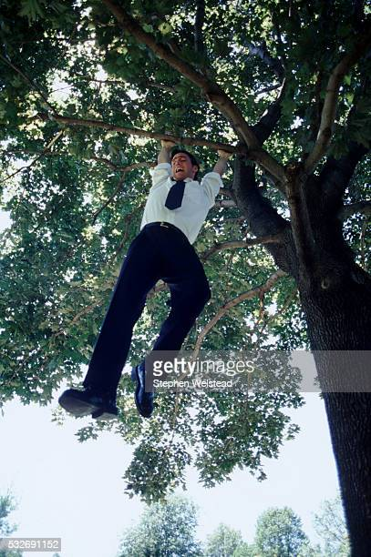 Executive hanging from a tree branch