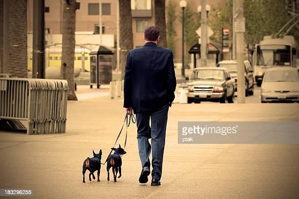 Executive Walking